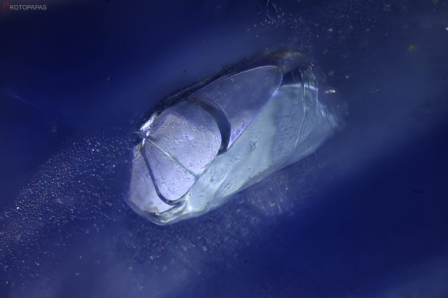 Crystal in unheated Sapphire