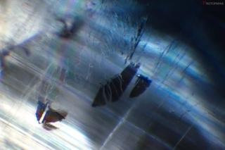 Liquid inclusions in kyanite