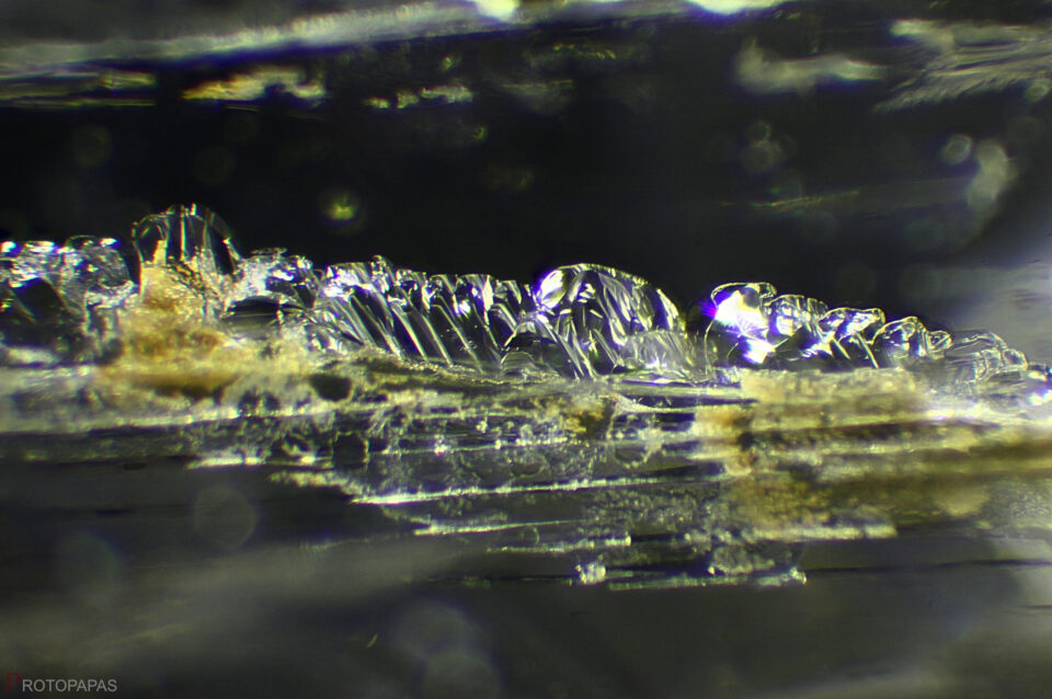 Negative crystals and residue in Scapolite