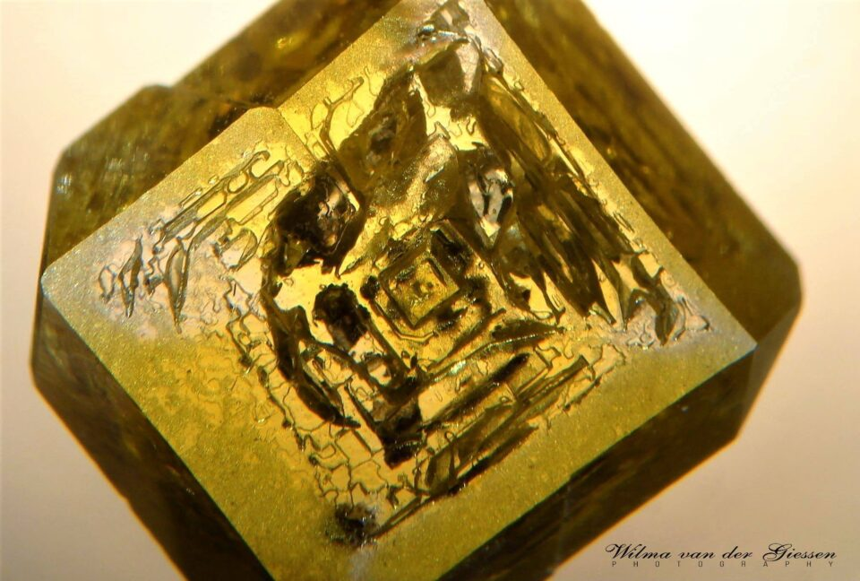 Plate of HPHT grown synthetic diamond with nickel inclusions. Photo by Wilma Van Der Giessen