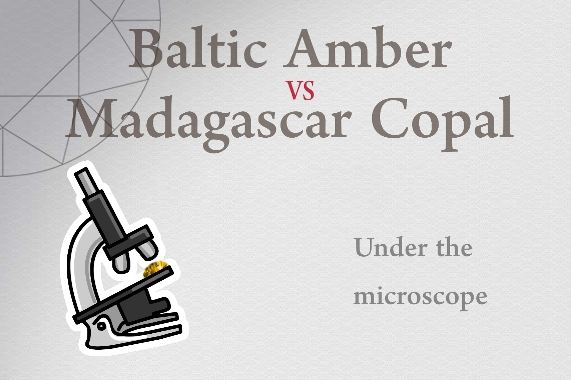 Baltic Amber vs Madagascar Copal - Photo by Francesco Protopapas