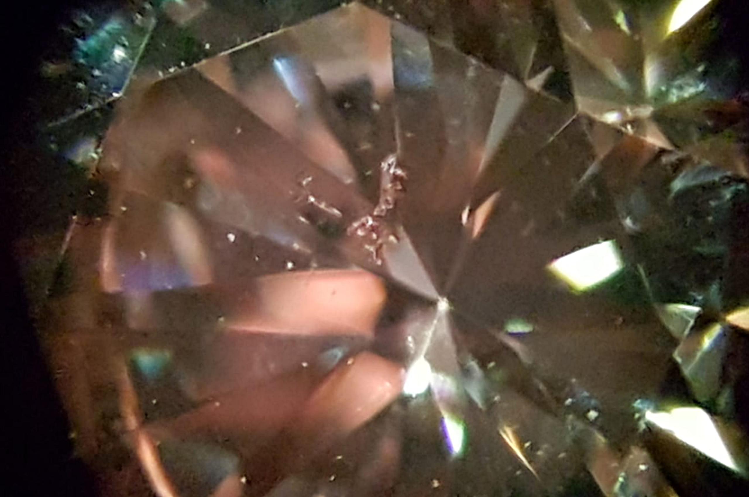 Feathers in Diamond. Photo by Fausta Aidala