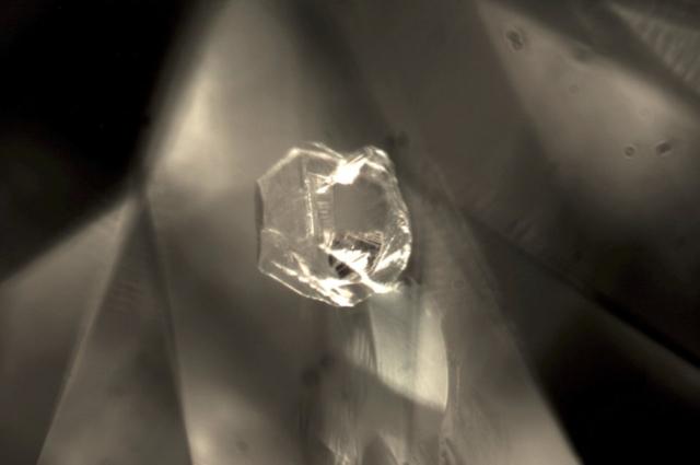 Crystal in Diamond. Photo by Liviano Soprani