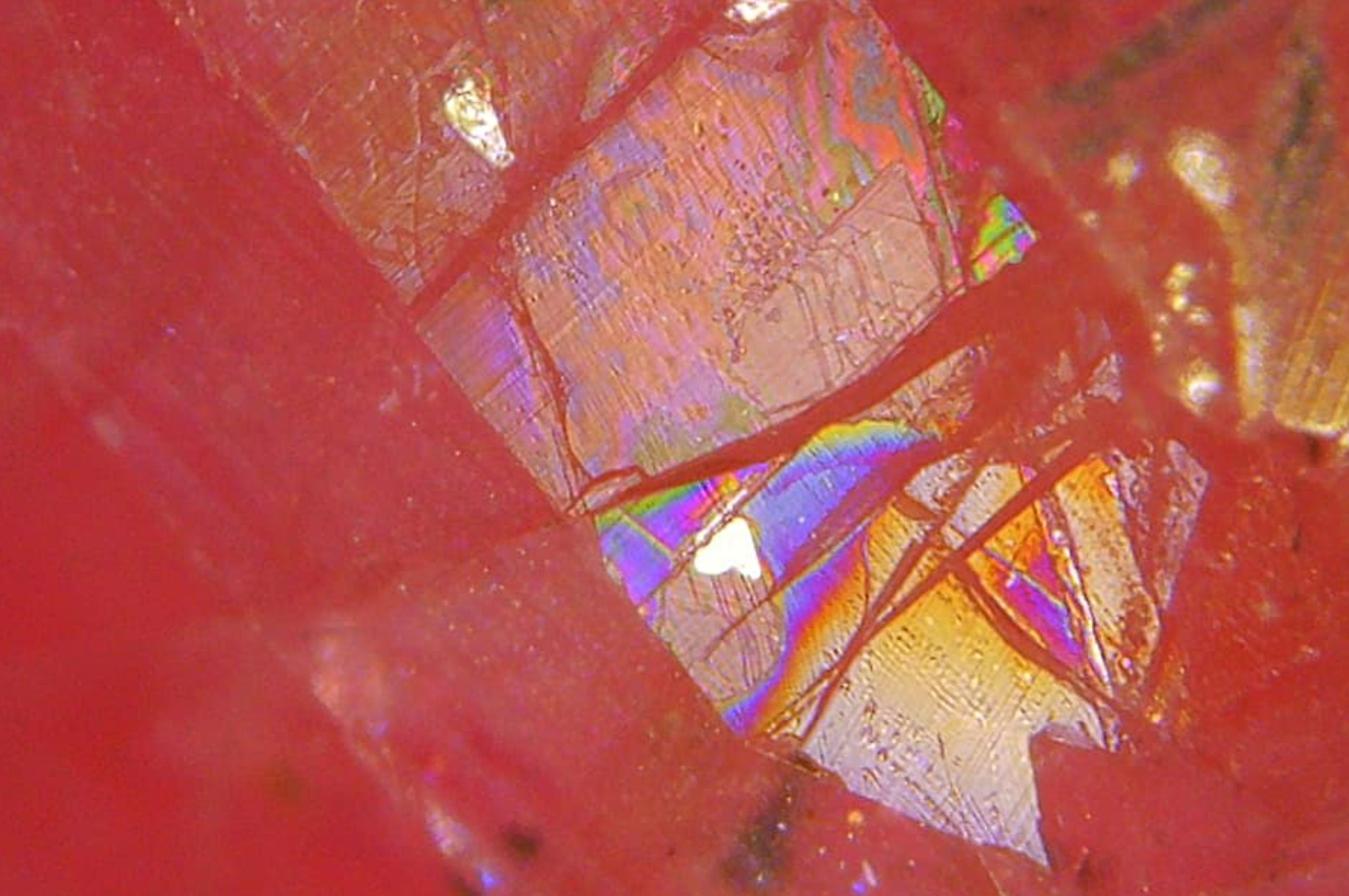 Iridescence in Lead glass filled Ruby. Photo by Karen Calef