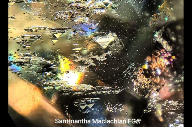 Trigons in rough Diamond. Photo by Sammantha Maclachlan