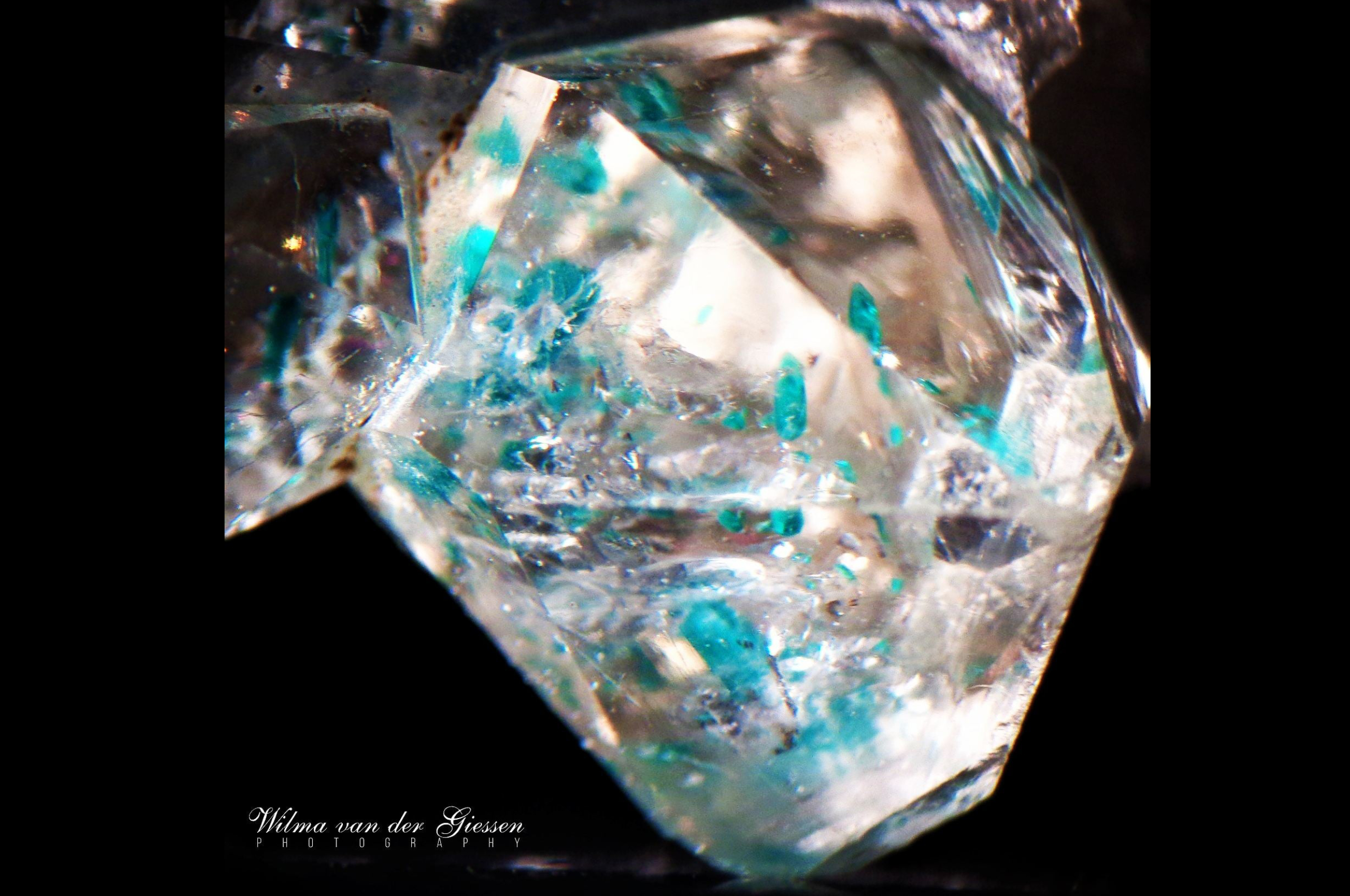 Dioptase and some Shattuckite in quartz from Tsumeb,SWA_. Photo by Wilma van der Giessen