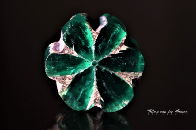 An exceptional trapiche emerald, with two hexagonal cores surrounded by eight trapezoidal sectors. Also examined by Van der Giessen (1994) described in G&G Fall 2015, p.233. Photo by Wilma van der Giessen