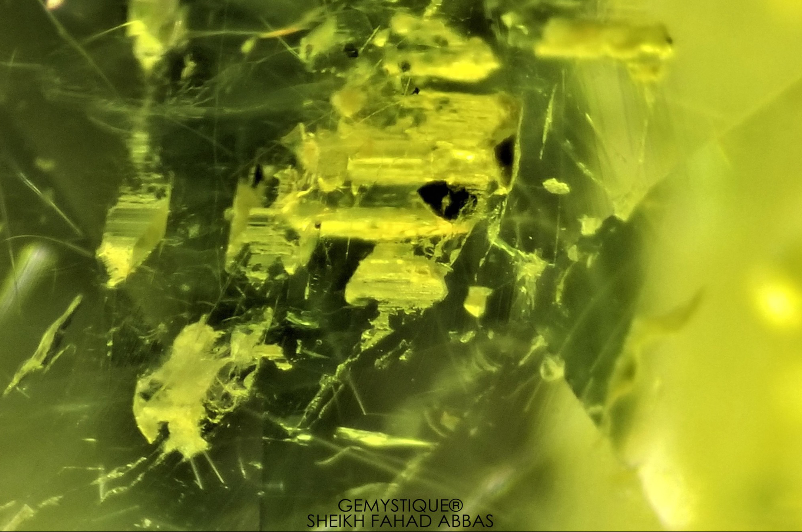 Black crystals, liquid inclusions and negative crystals in Peridot from Supat Valley in Pakistan. Photo by Sheikh Fahad Abbas