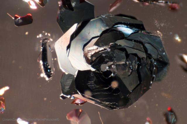 Hematite tabular aggregates that look like black roses in clear Quartz. Photo by Liviano Soprani