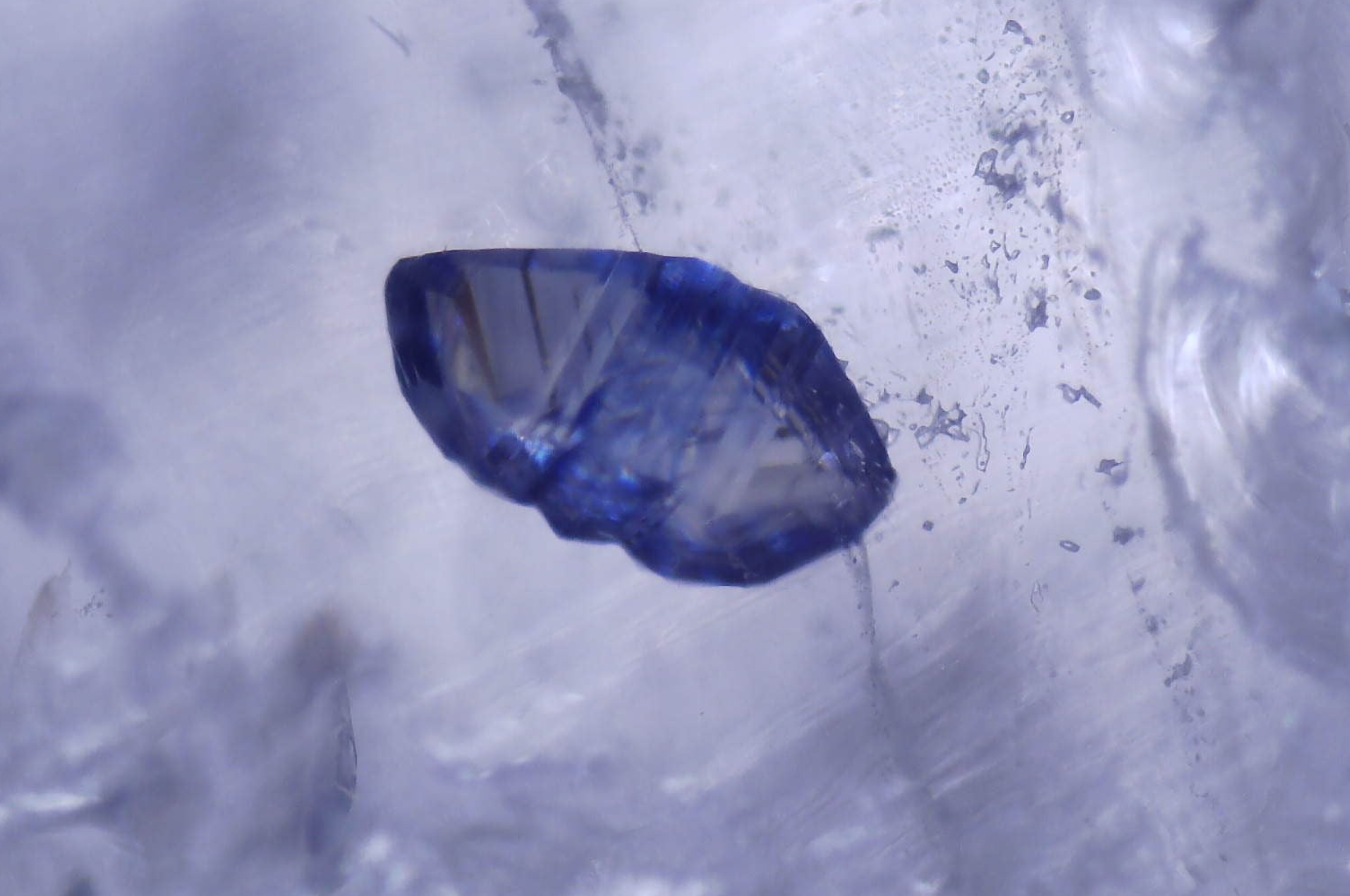 Probably blue Fluorite and liquid inclusions in Quartz. Photo by John Burrows