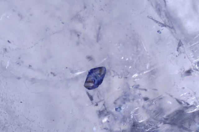 Probably blue Fluorite in Quartz. Photo by John Burrows